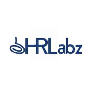 Hrlabz LLP , Parent Bass Biz Services (P) Ltd