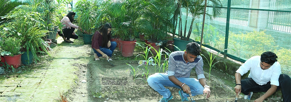 Top BSc. Agriculture College in Dehradun